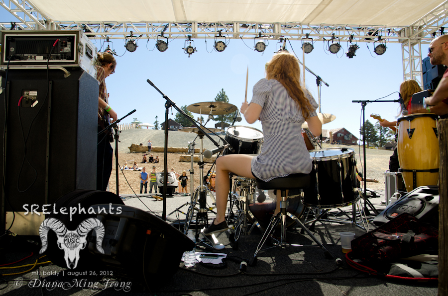 SRElephants | Big Horn Music Festival