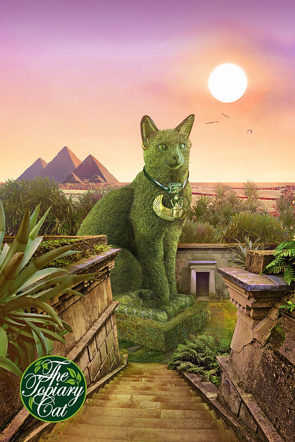 The Topiary Cat in Egypt