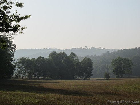 (18-15) Morning in the hayfield, one of my favorite views on the farm - FarmgirlFare.com