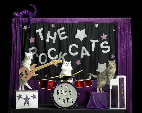 Acro-Cats @ Headwaters Theatre
