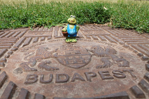 Mr Frog checking a manhole cover in the park
