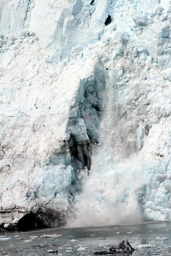 Glacier Bay - Calving in Progress