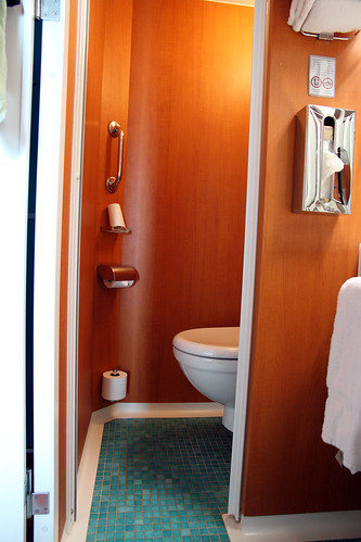 Norwegian Pearl - Cabin Bathroom - Consider Your Knees