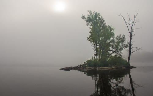 lake reflection water rock fog landscape island swamp rideaucanal