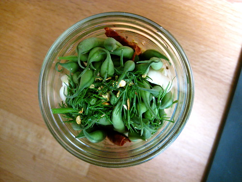 dilly beans: packed mason jar
