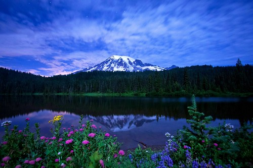 mountrainiernationalpark pacificnorthwest reflectionlake moonlight wildflowers washingtonstate nationalparks mtrainier canonrebelxsi fresnatic