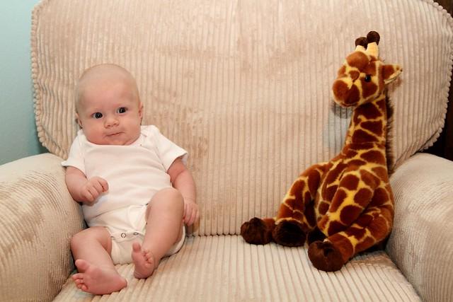 M vs Giraffe Week 9