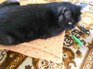 персиковая подушка муся лежит