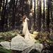 A Woodland Symphony by Whitney Justesen