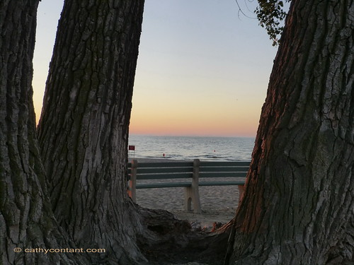 trees sunset lake beach water bay sand greatlakes upstatenewyork newyorkstate lakeontario waynecounty sodus sodusbay soduspoint