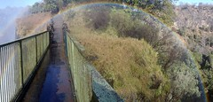 Panorama: Rainbow at Victoria Falls