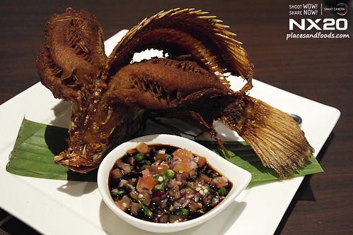 dancing fish setia alam signature fish