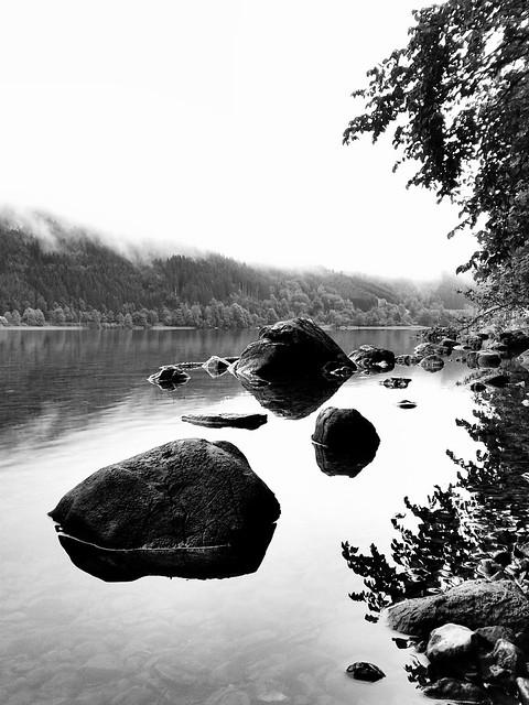Lunzer See am Morgen