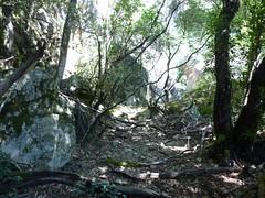 Le vieux sentier en RD en aval de la brèche du Carciara : le chemin à l'approche du canyon