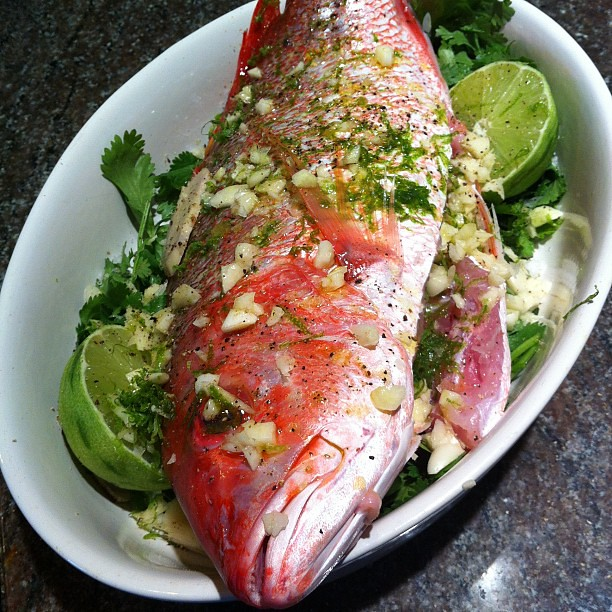 Red Snapper With Cilantro, Garlic, And Lime Recipes — Dishmaps