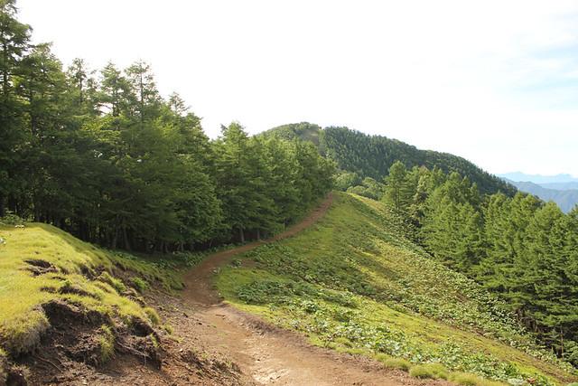 雲取山_96