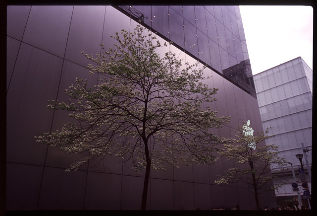 20120421_0123_Elmarit-M28second_CLE(Br)_Ginza_Tokyo