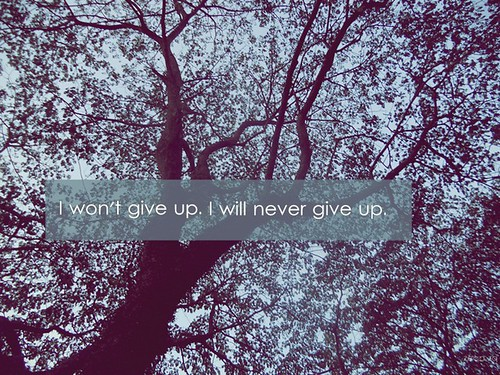 I won't give up. I will never give up.