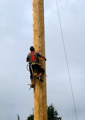 mast(0.0), abseiling(0.0), tower(0.0), adventure(1.0), arborist(1.0),