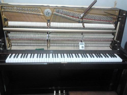 piano pelado