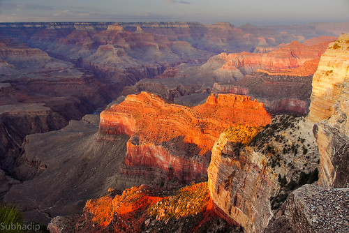Golden Grand Canyon by Subhadip Chatterjee