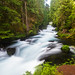 McKenzie River, Oregon by Xuberant Noodle