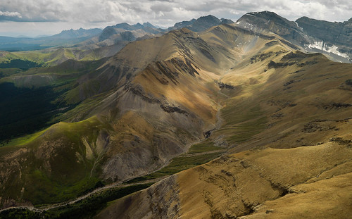 Rocky Mountain texture