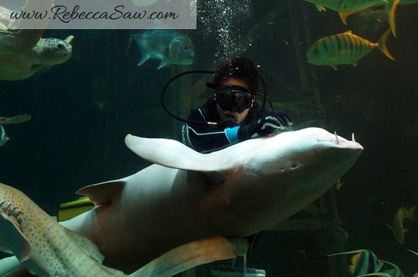 Singora Tram Tour - songkhla aquarium thailand-009