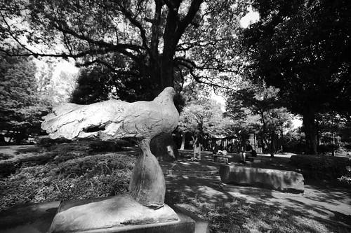 2012夏日大作戰 - 熊本 - 武蔵塚公園 (8)