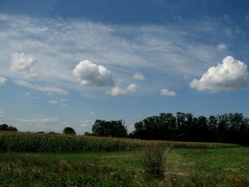 summer clouds landscape felhők csorna gomolyfelhő cumulomean cmulus