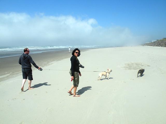 Strolling on a sunny beach