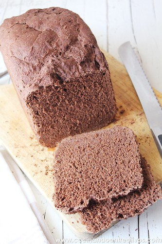 Pan de chocolate (1)