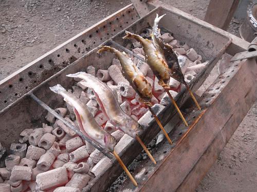 洞川川魚センター@天川村-06