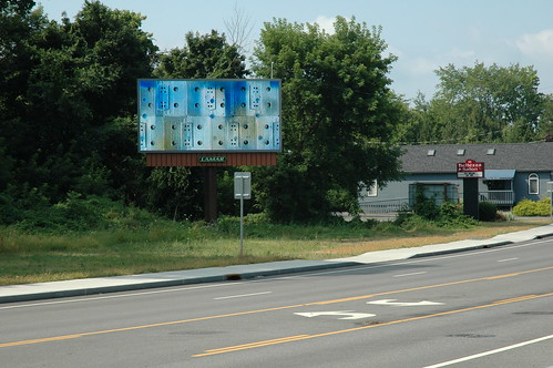 Albany Billboard Art Project 2012 - Julia Cocuzza (12)