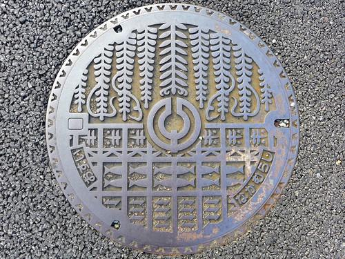 plant nakamura kochi japan manhole flower fish