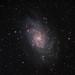 M33 - The Triangulum Galaxy by DJMcCrady