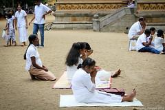 Kelaniya Raja Maha Vihara, Colombo, Sri Lanka. 2016.