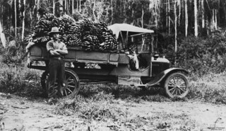 Walter Duhs beside a truck loaded with bananas, 1925