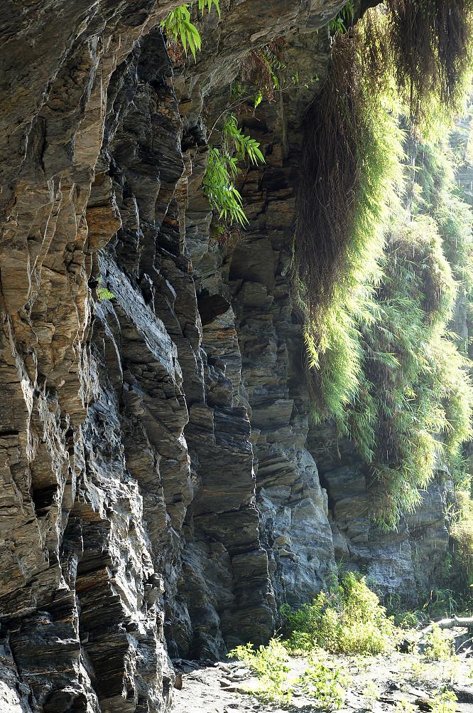 萼溫斷崖,朝陽步道-064