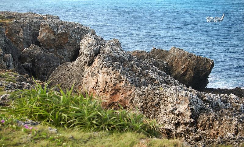 落日亭崩落的珊瑚礁
