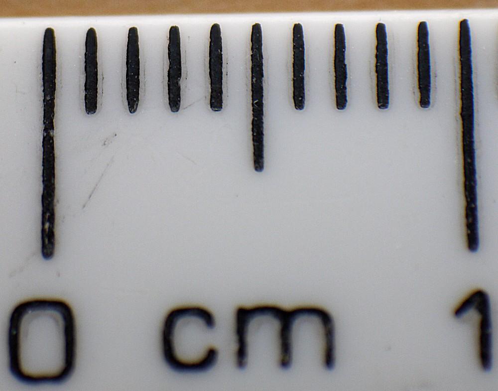 Ruler 1cm. Panasonic G2 14-42mm Reverse Macro