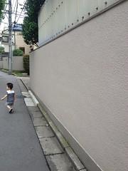 朝散歩 (2012/7/14)