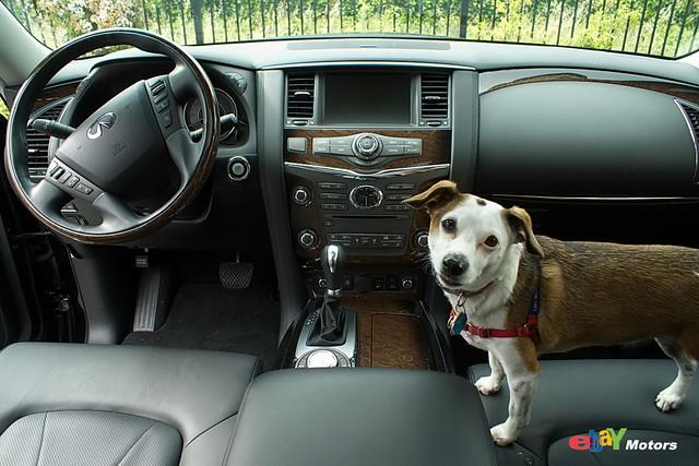 2012 Infiniti QX56 interior