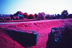 Kodak Aerochrome infrared film