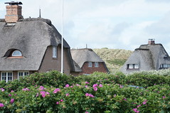 Sylt in Germany