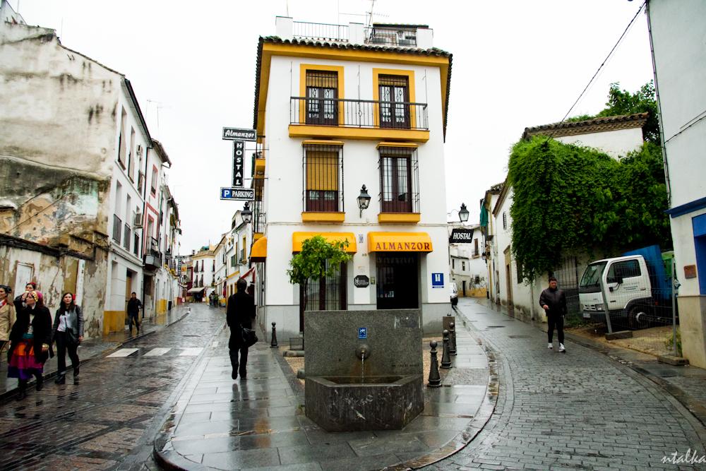 Cordoba - Andalusia, Spain