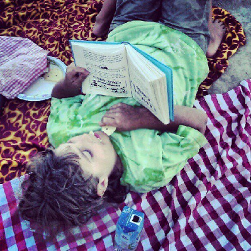 Picnic Reading