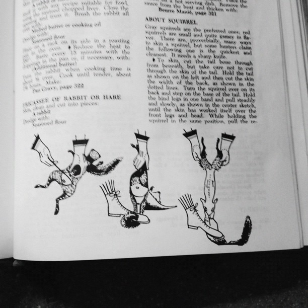 How to skin a squirrel, via the 1964 ed. Of THE JOY OF COOKING. Step one, put on a dainty boot.