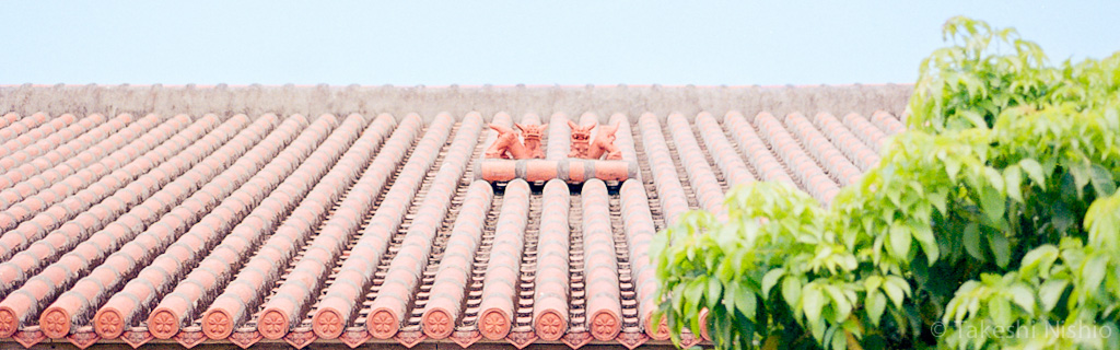 屋根の上のシーサー / Shisa on the roof