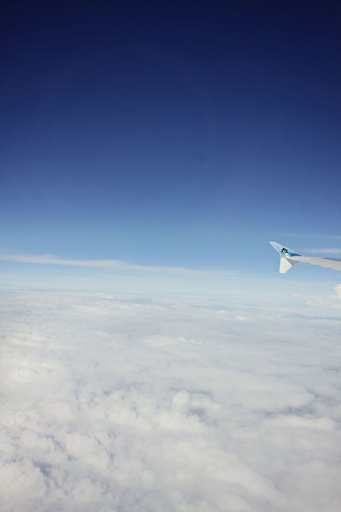 Aspen airplane 4